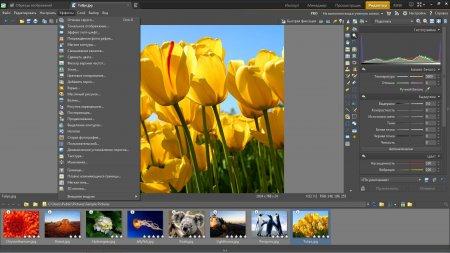 Zoner Photo Studio Professional 17