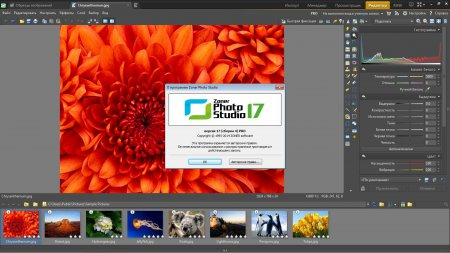 Zoner Photo Studio Professional 17