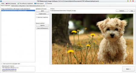 TSR Watermark Image v2.4.3.4