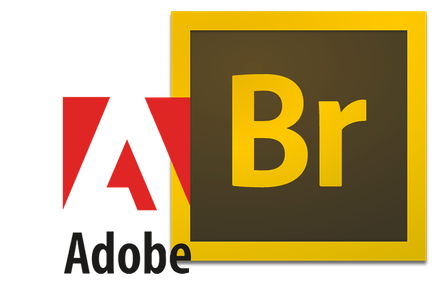 Ключ Adobe Bridge CS6