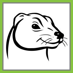 PC Ferret 2.2.3.1008
